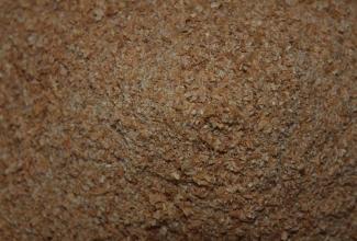 Muud söödad, nisukliid, foto Estfarm