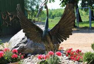 Raiba-Plunksna-linnupargi-kulastus-36